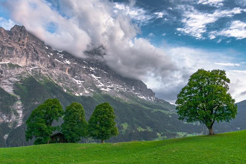 Eiger in Clouds-0888.jpg