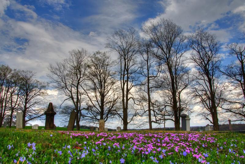 Forgetmenots-cemetery-hartville5.jpg
