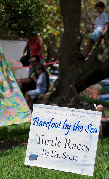 Barefoot by the Sea 2013 45 of 81