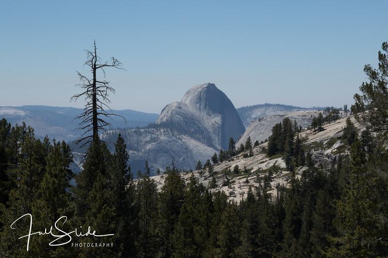 Yosemite 2018 -20.jpg