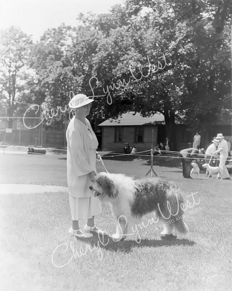 Old-English-Sheepdog-WM.jpg