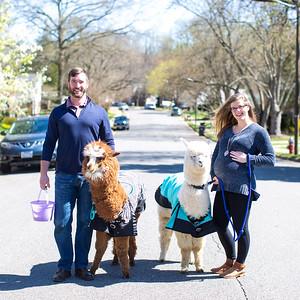 Eva & Matt's Maternity Portraits Quick Picks