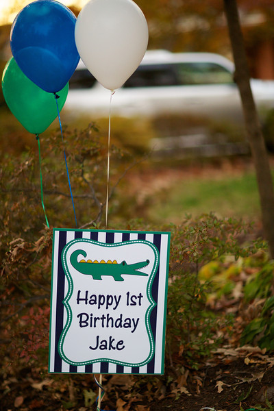 Jake's 1st Birthday