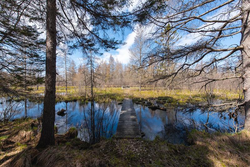 HW_2487-Serenity-Pines-Ct_0017.jpg