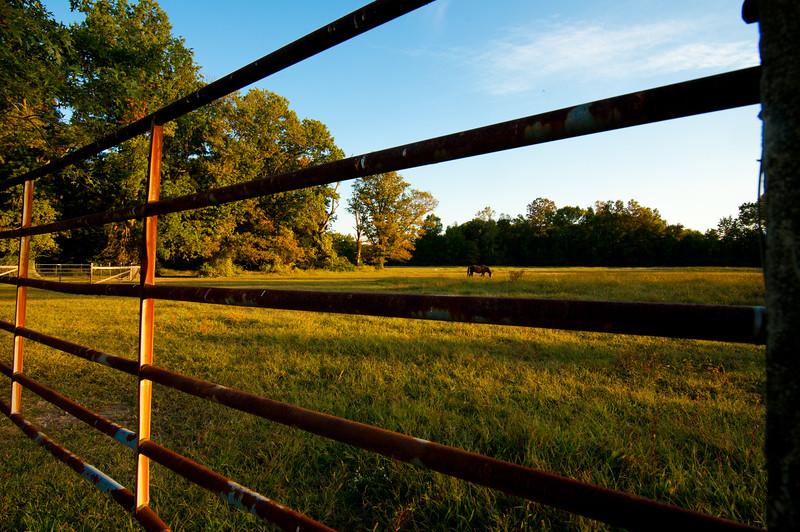 Woodlyn Fall -130930-2012.jpg
