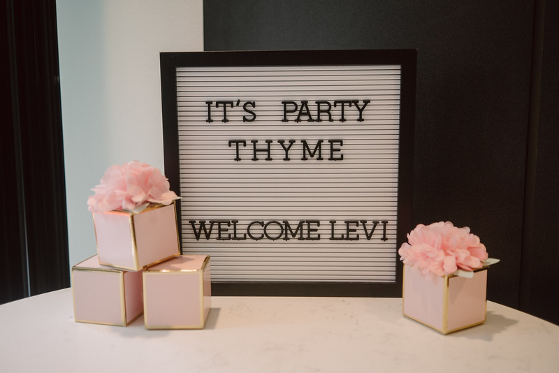 Haley and Baby Levi's Shower 2019-8.jpg