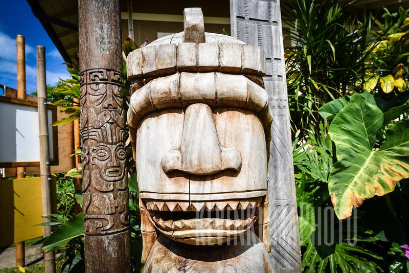 Kauai2017-288.jpg