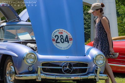 2019 Mercedes Benz Club Picnic