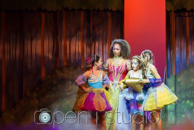 2015 Middle School Spring Production Cinderella