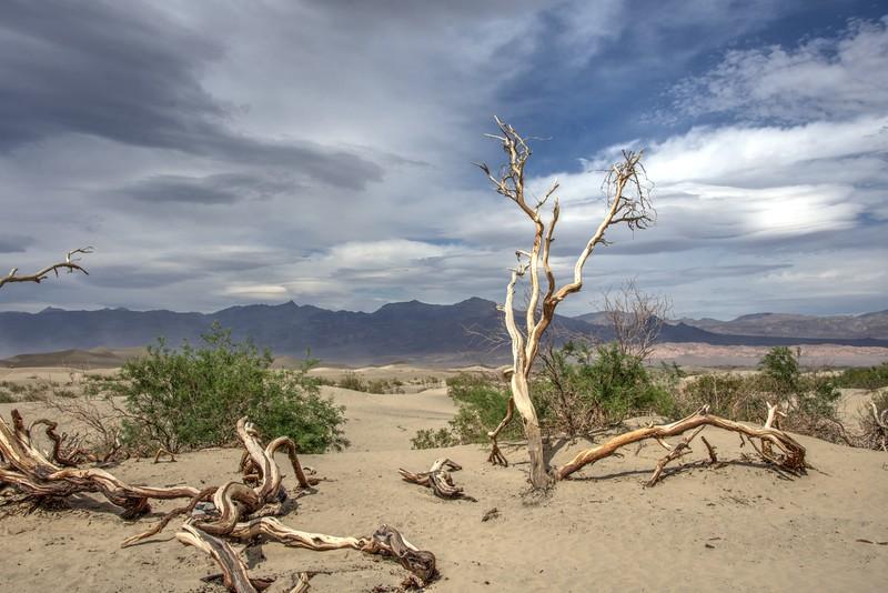 Death-valley-dunes-April02017-rjduff.jpg