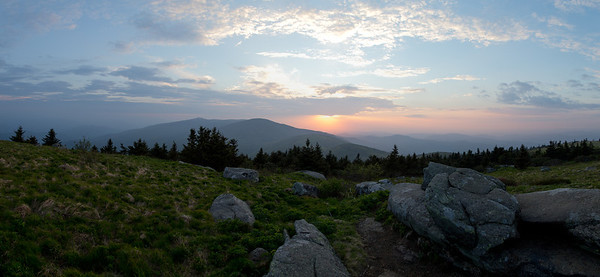 Grassy Ridge, Roan Mountain, May 2014