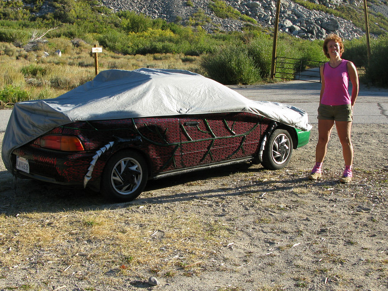 customizing needs a better fitting car cover