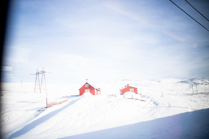 Norway_Odyssey_428.jpg