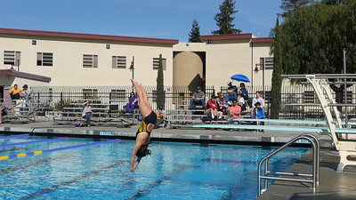 180413 LIVERMORE-GRANADA DIVING (AT AMADOR MATCH)
