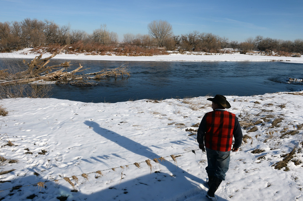 . KERSEY, CO - JANUARY 8, 2014: Rancher Jon Flack looks at  flood damage along the banks of the South Platte river that runs along his  ranch in Kersey, Co on January 8, 2014.  He is one of many ranchers that hasn\'t gotten much help from the government in helping to pay for expenses on his ranch incurred from the September floods. His losses included about  200 bales of hay worth about $30,000 which were destroyed when they were fully submerged in water.   As well many fences, fencing, corrals, ditches and land were severely damaged from the floods and need to be repaired.  Also, because much of his pasture land was completely submerged, he has had to rent pasture land on which to keep his cattle.   (Photo By Helen H. Richardson/ The Denver Post)