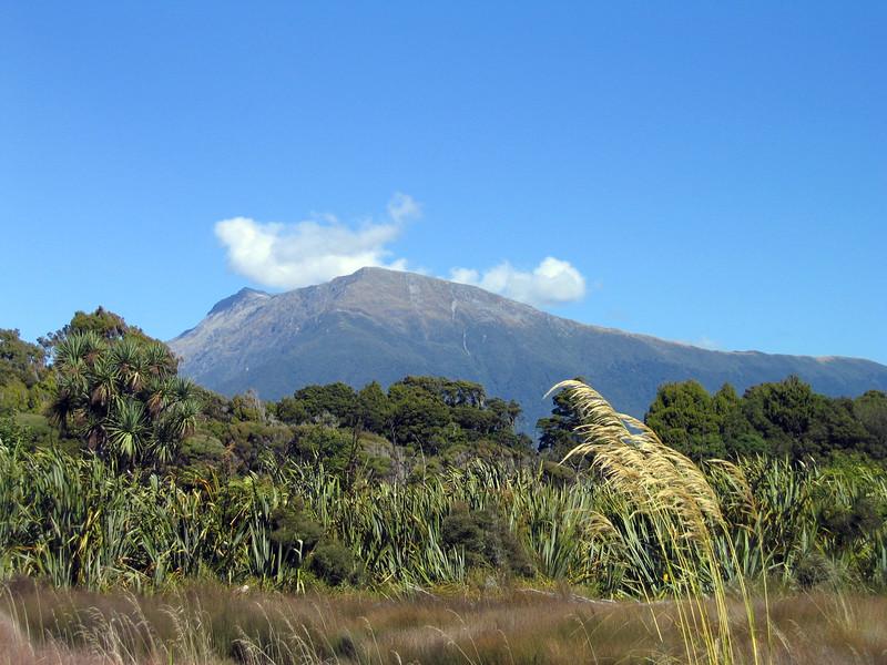 New Zealand 281.jpg