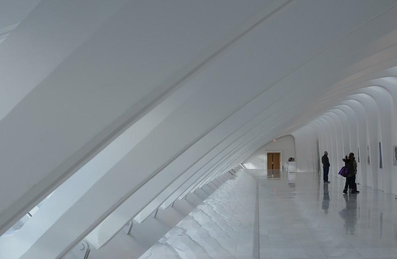 Z_CalatravaDec2018 115.JPG