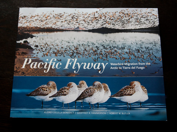 """2020 Publication in the book, """"The Pacific Flyway Waterbird Migration from the Arctic to Tierra del Fuego"""""""