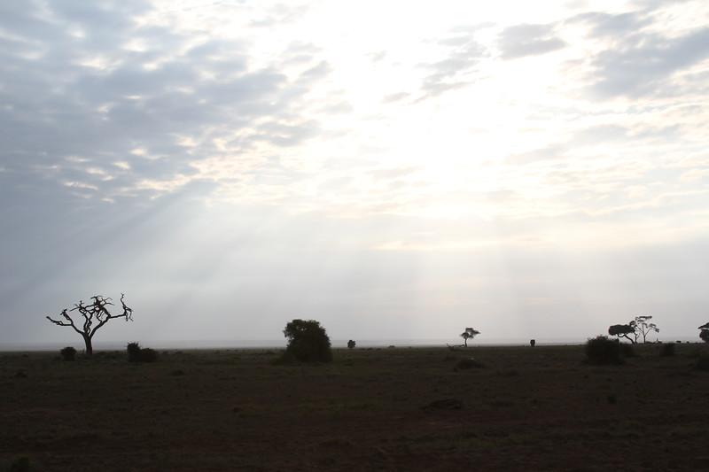 Kenya 2019 #2 256.JPG