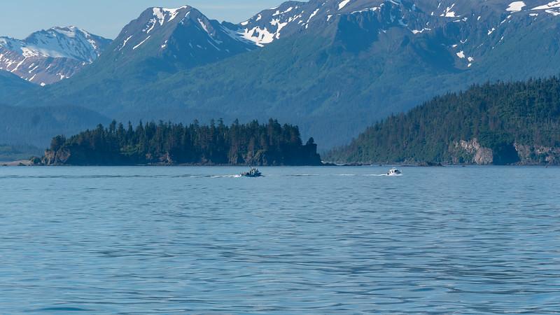 AlaskaSummer2018-194.jpg