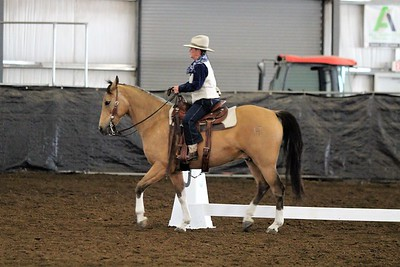 Far West Schooling Show May 2017