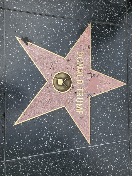 20190521-03p1-SoCalRCTour-Hollywood Walk of Fame-Trump's Star-Holywood CA-Clean.jpg