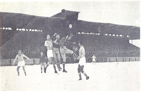 Stadion Grbavica-.jpg