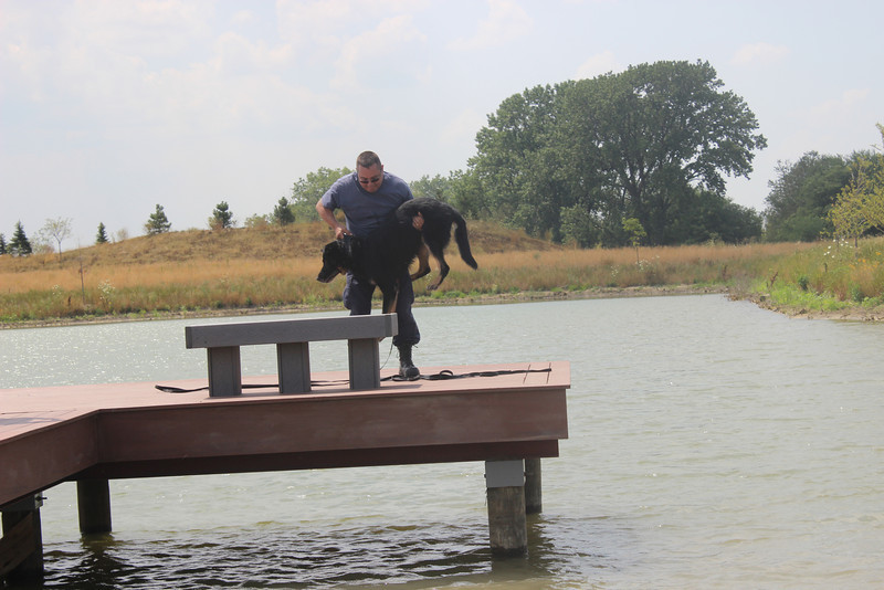 K9 Water Training 083.jpg