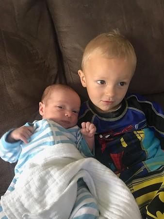 Brandon and Willis 2019