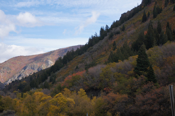 Fall colors Utah 10 13