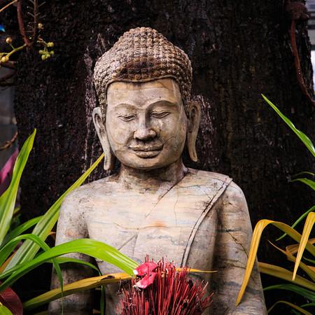 Cambodia 2013
