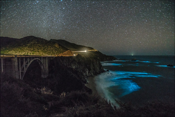 Bixby Bridge Blue Bioluminescence