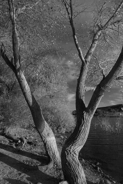 Lake Elizabeth 114_filtered.jpg
