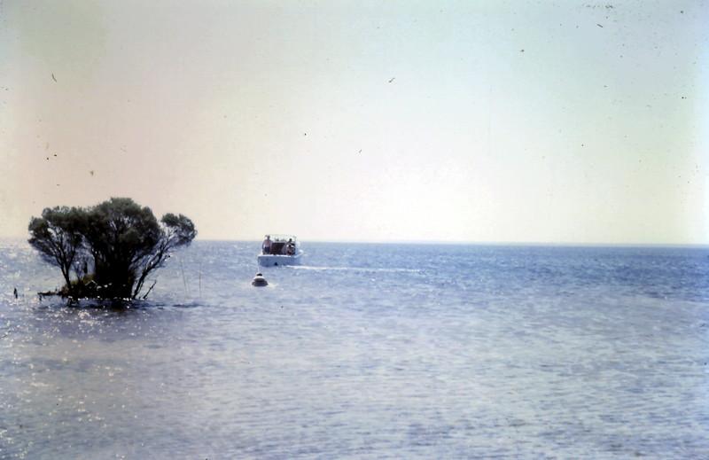 1968-2 (10) Graham watersking @ Lake Wellington 10.JPG