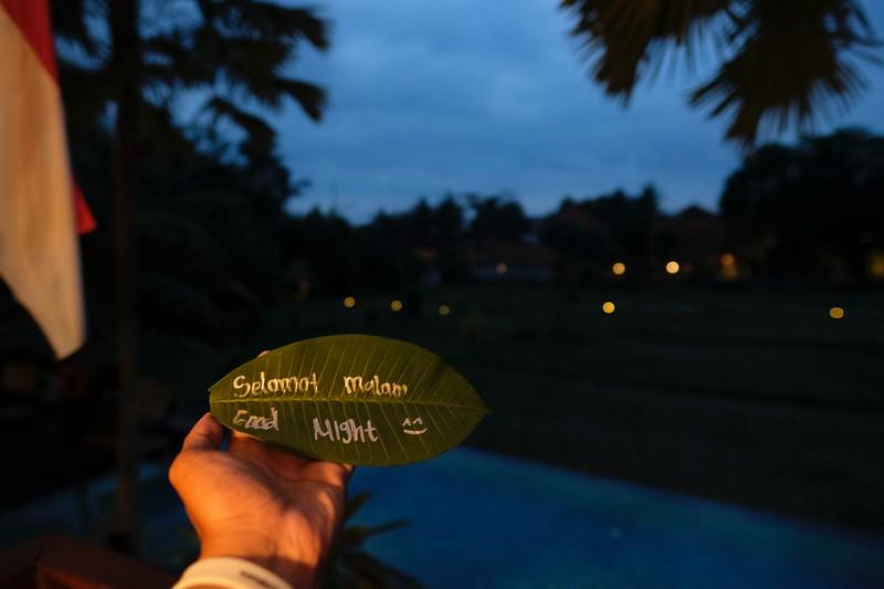 Trip of Wonders Day 10 @Bali 0159.JPG