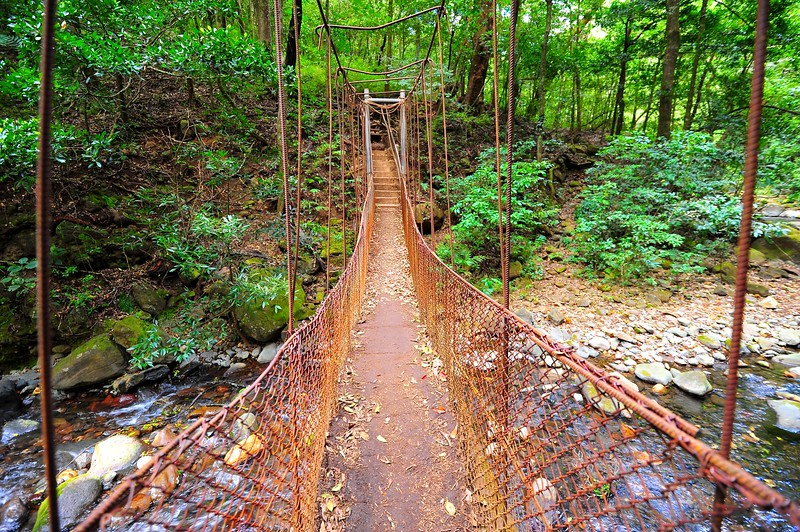 A cute suspended bridge