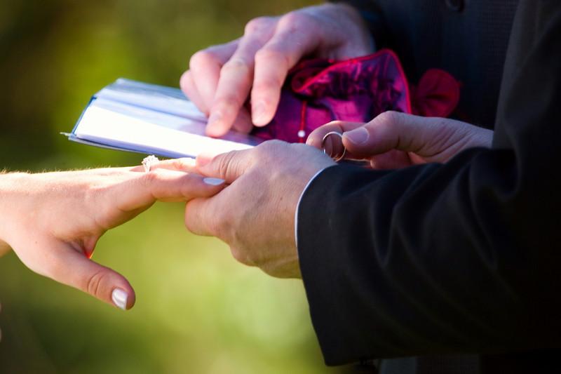 354806215_wedding (58).jpg