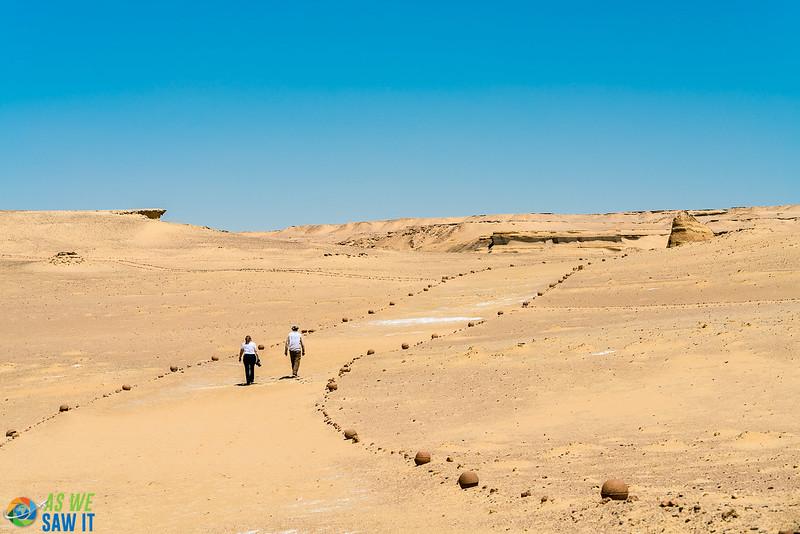 Wadi-El-Hitaan-02402.jpg