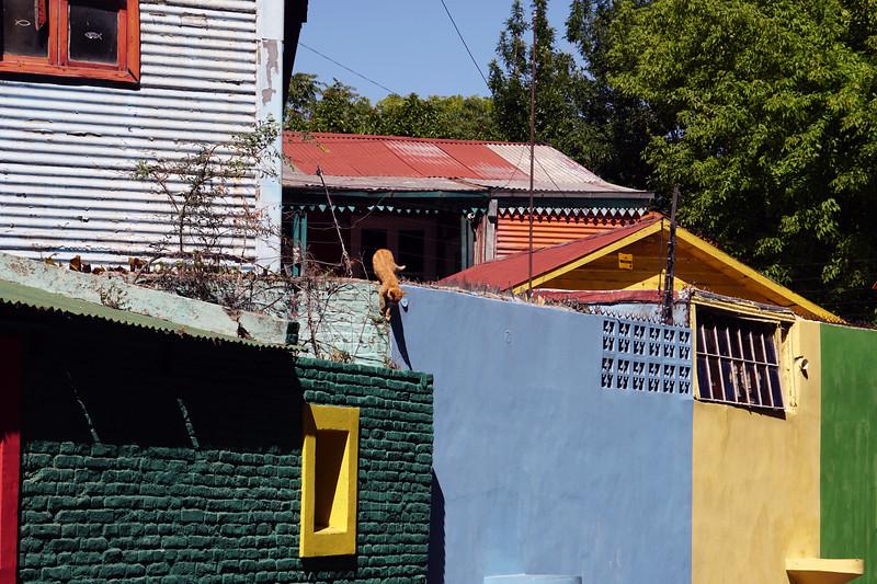La Boca of Buenos Aires