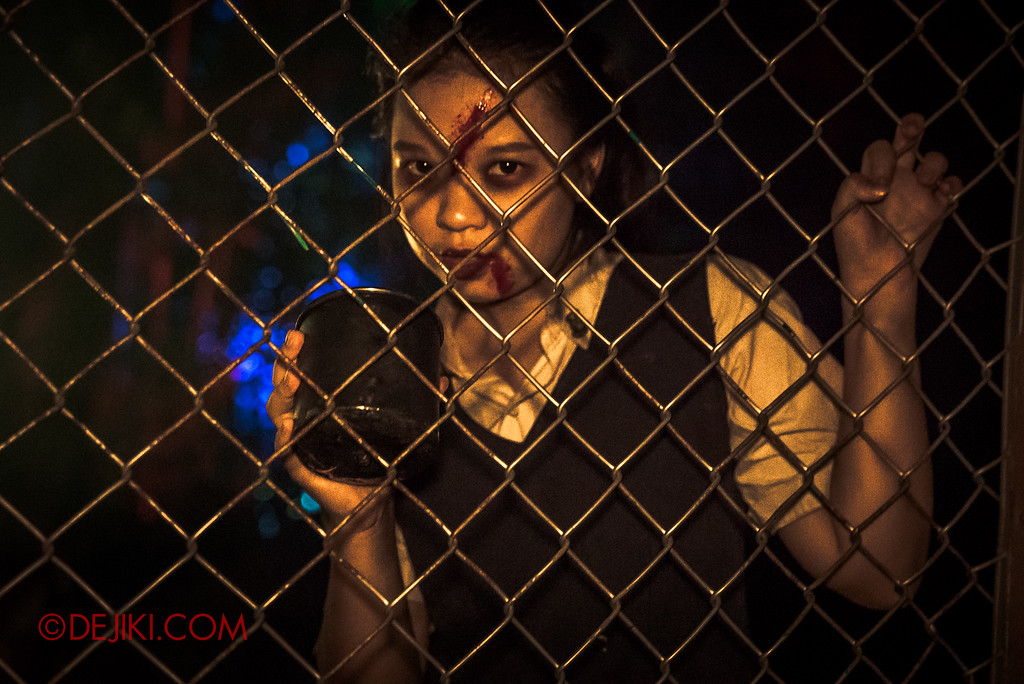 Halloween Horror Nights 6 Final Weekend - Suicide Forest / Student Corner Fence