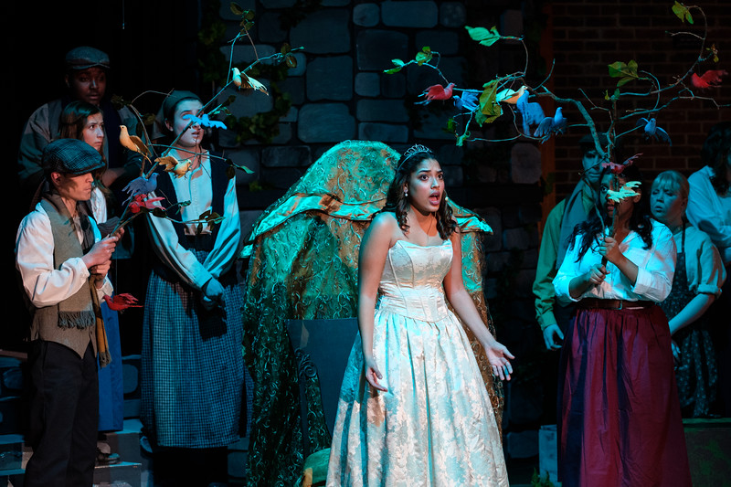 2018-03 Into the Woods Performance 0666.jpg