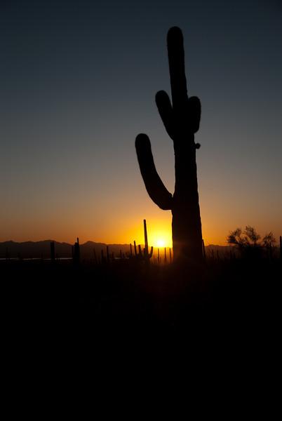 Tucson, Az - Oct 1, 2009-0018.jpg