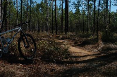 24 January 2011 Trail Dynamics on Munson Hills