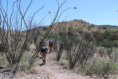Temporal Gulch Trail Construction Project