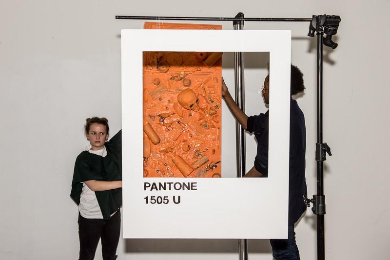 pantoneteam-3062.jpg