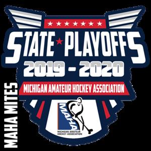 2020 0308 Mite State Playoffs