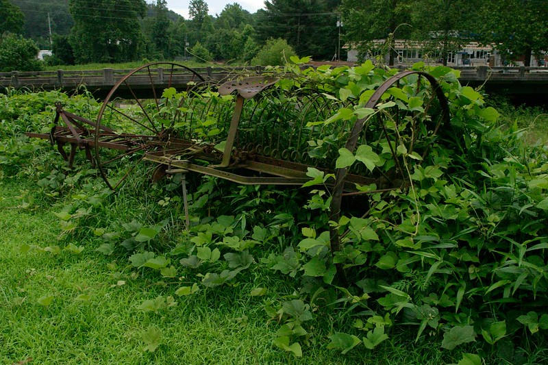 antique farm equipment 286.jpg