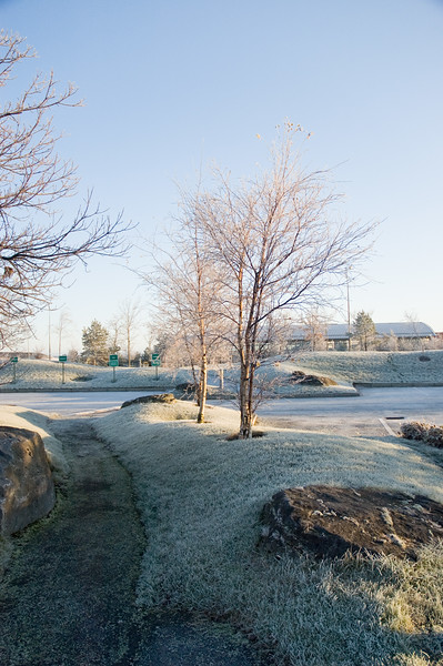 2006-12-20 - Winter in Citywest