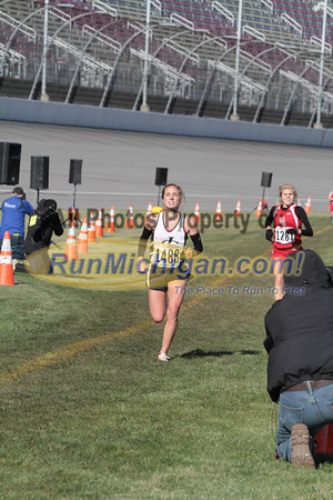 Finish Gallery 1, D2 Girls - 2014 MHSAA LP XC Finals