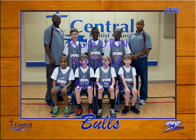 Bulls Team